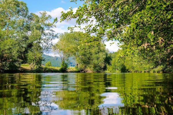 Lago cercado de árvores e campo com montanhas ao fundo
