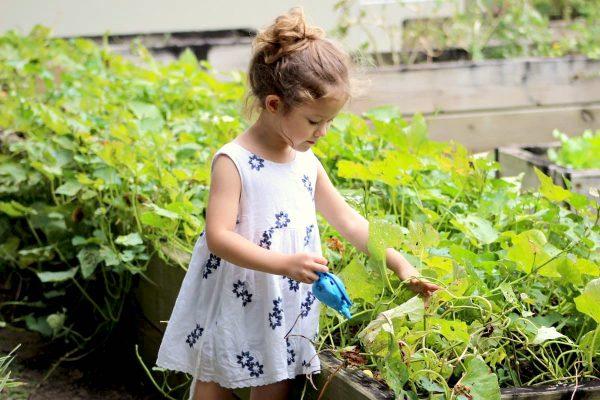 Criança ao lado de pequena horta